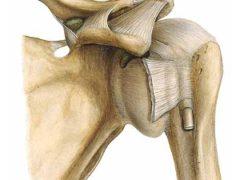 Спортивные травмы плеча